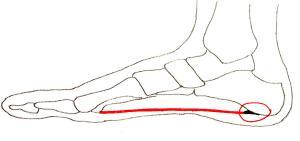 zere onderkant voet